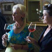 Tous devant vos écrans, le 15 janvier à 13h30, pour regarder Un dimanche à la campagne sur TF1 avec Catherine et Isabelle Orliac de Chateau Labastide